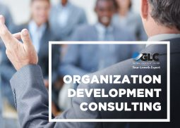 Organization Development Consulting